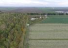 Paradijsvogelbosje Oosterwold