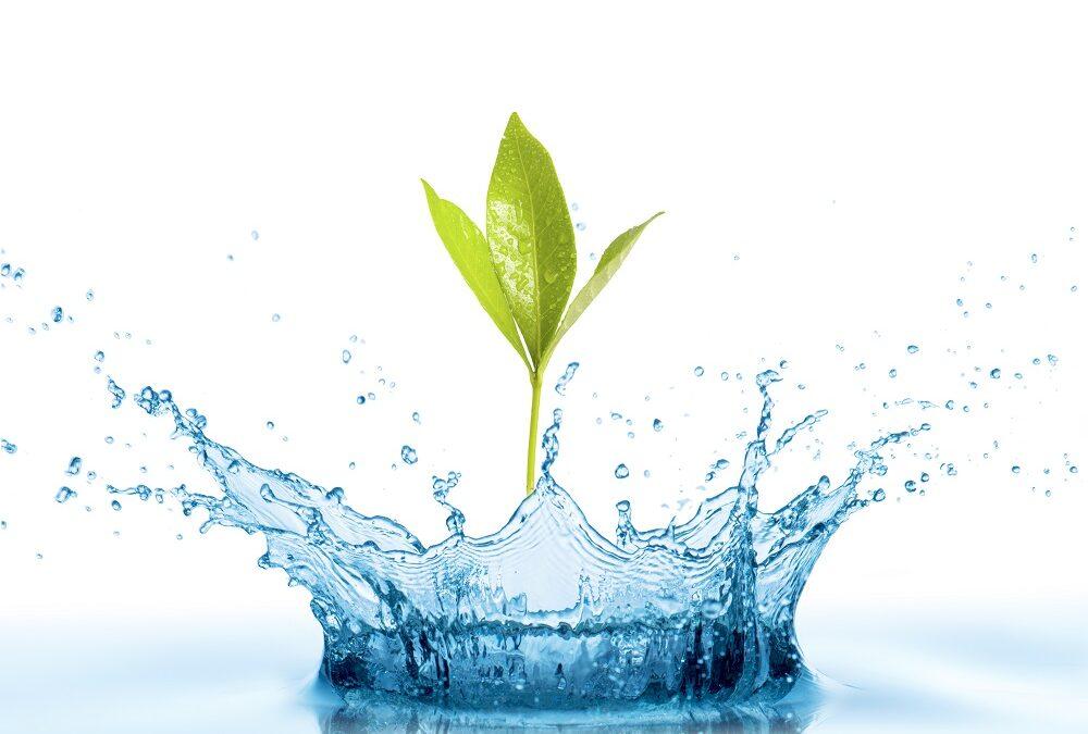 Start WaterLab Flevoland (op uitnodiging)