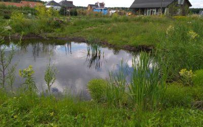 Oosterwold en de geest van de omgevingswet