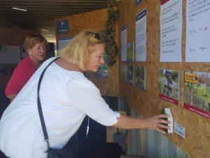 Bezoeker bekijkt expositie
